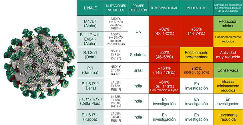 Variantes COVID-19 - Gencell Pharma